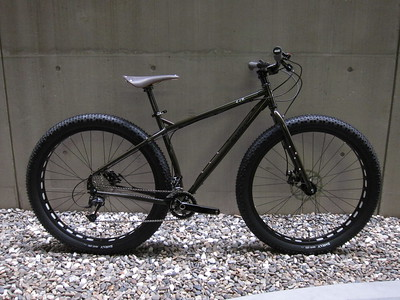 SURLY ECR Custom