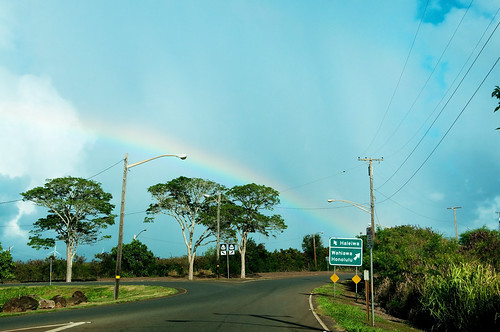 driving Oahu | by KelliCampbell