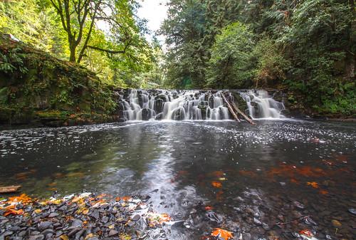 fall nature water creek forest waterfall fallcolor falls beavercreek