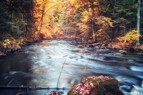 falling down the river | by rsc_escher