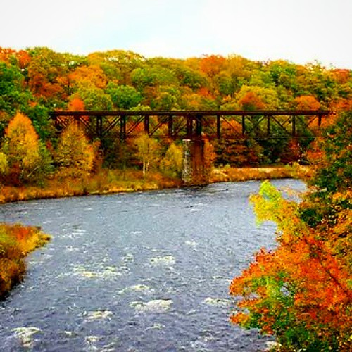 railroad bridge autumn trees fall nature colors leaves rural river landscape colorful massachusetts country seasonal fallfoliage uploaded:by=instagram