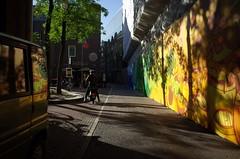 De Nes, Amsterdam