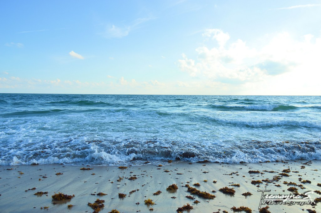 Playalinda Beach: Space Coast Attractions Review - 10Best