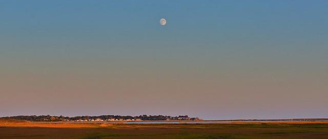 Marsh Moonrise