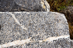 Roman quarry at Karagöl (Teos), Turkey (13): Latin inscription