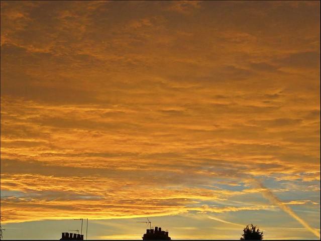 Golden Sunset ..