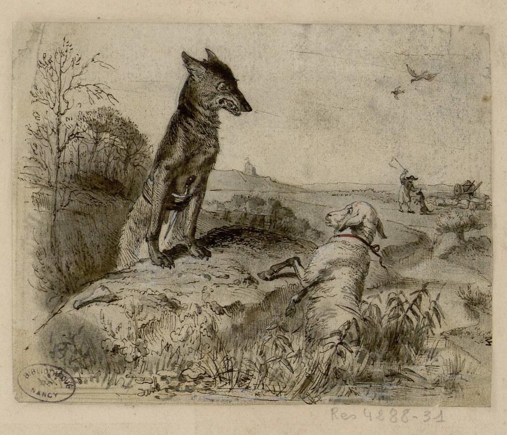 Le Loup Et L Agneau Les Fables De La Fontaine Dessins Or Flickr