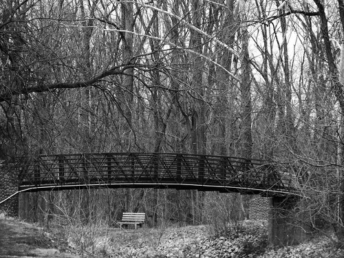 project52 landscape blackandwhite bridge bench tree park indiana brownsburg 2017