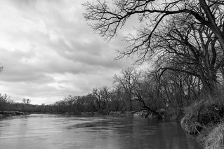 Raccoon River black and white  217/365 | by mjldesmoines