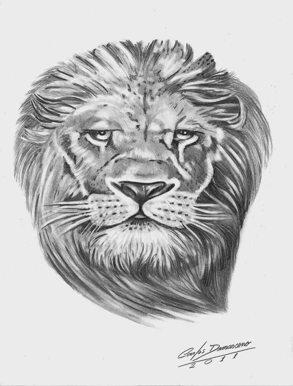 Desenho De Carlos Damasceno 2011 Leao Narnia Carlos Damasceno