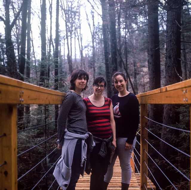 Les girls dans la forêt