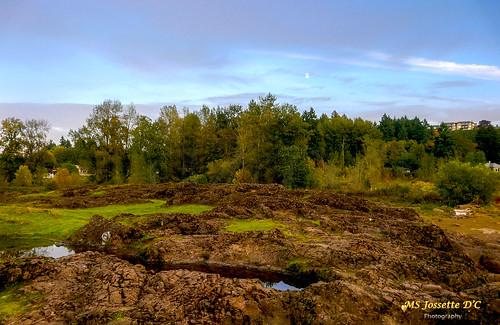 travel sunset usa colors oregon landscape island rocks geological elkrockisland