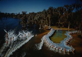 Tarpon Club of Florida State University