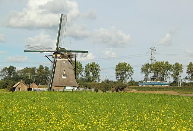 De Kameel in een Nederlands landschap