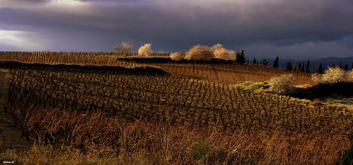 france automne aude campagne languedocroussillon