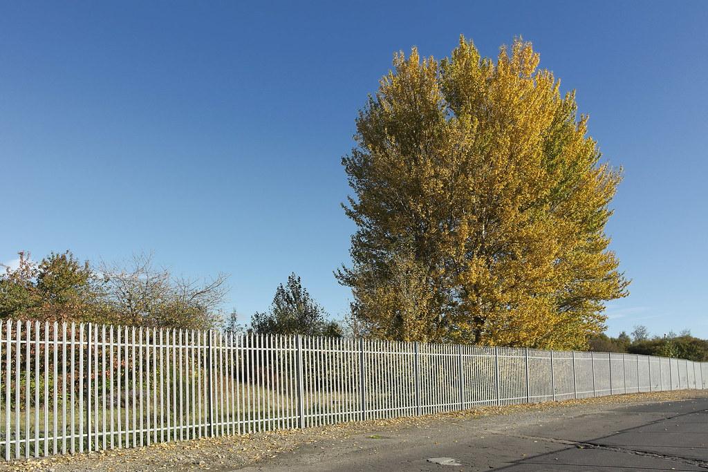 2014-10-14-2598 Glasgow (Linthouse)