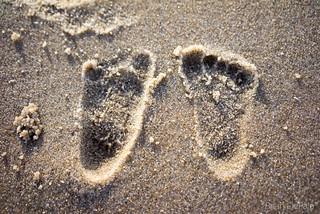 Baby Feet   by Brian DePalo