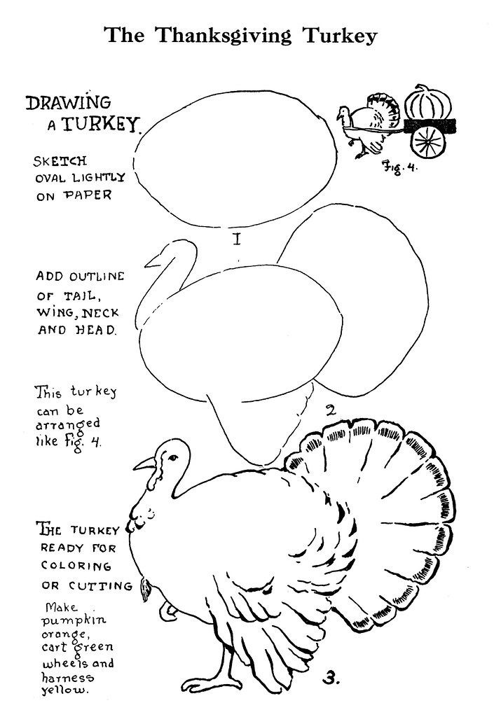 Drawing A Realistic Turkey More Decorations For The Schoo