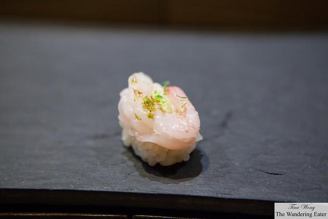 Sweet shrimp with Kaffir lime zest