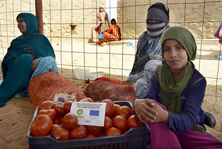 Western Sahara: Bringing fresh food to the desert | by EU Civil Protection and Humanitarian Aid