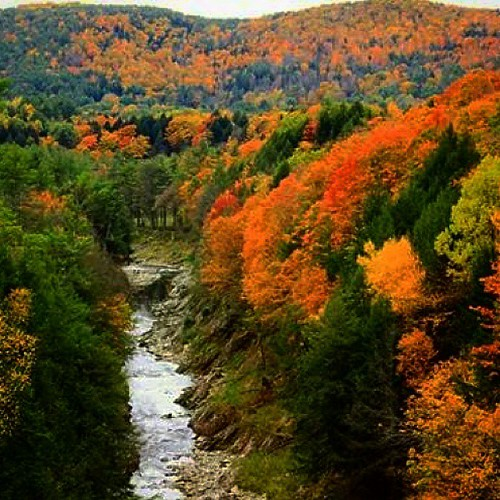 autumn trees fall nature colors river landscape vermont fallfoliage gorge uploaded:by=instagram