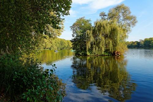 kessello park provinciedomein lake leuven vlaamsbrabant louvain trees reflections nikon d7100 1685mmf3556 landscape nature brabantflamand belgique belgium belgië pantchoa françoisdenodrest