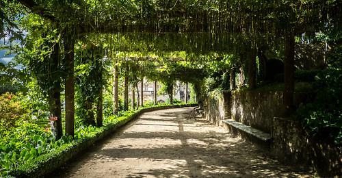 portugal garden do milo jardin filter serra hoya buçaco