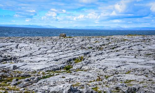 ocean park county ireland sea irish cliff galway water rock stone landscape bay coast meer europe clare stones north rocky eu irland eire cliffs na atlantic national co limestone burren np irlanda irlande the northatlantic éire poblacht boireann airlann héireann