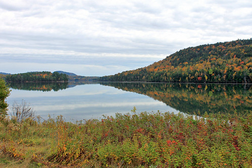 autumn trees sky canada nature pine clouds canon reflections river colours seasons cloudy tide country newbrunswick evergreens colourful maples charlottecounty waweig