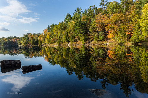 park pink autumn light lake canada nature colors canon reflections landscape quebec gatineau