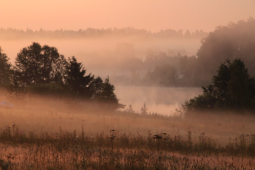 morning summer mist lake nature beautiful field misty fog sunrise suomi finland dawn countryside finnland country foggy finlandia フィンランド finlande finlândia finnország finlanda finlàndia финляндия finnishsummer finnlando فنلندا