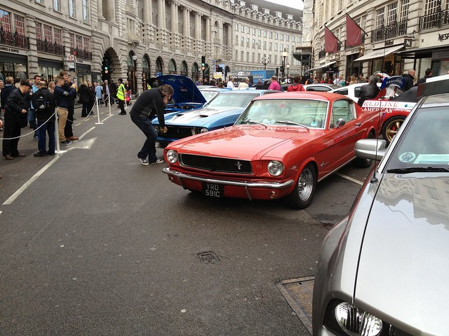 Ford Mustang 50th Anniversary Concours