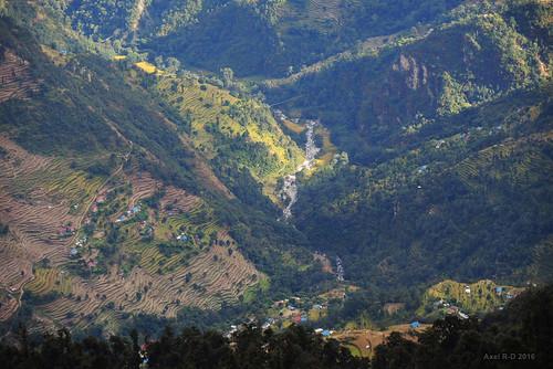 champs montagnes nepal préci phaplu solukhumbu terrasseterrasses village