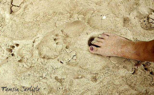 Monkey Pawprints