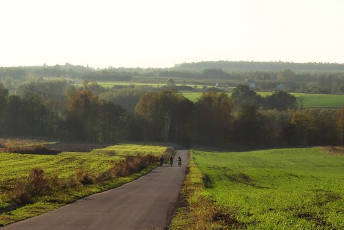 road autumn trees green fall nature bike landscape view path sunday hills lodzkie łódzkie parkkrajobrazowywzniesieńłódzkich lodzhillslandscapepark
