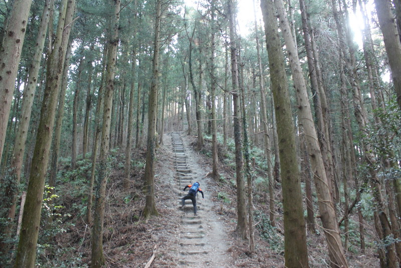 2014-02-01_00067_宝登山