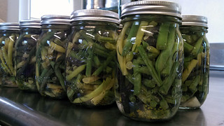 dilly beans | by Green Mountain Girls Farm