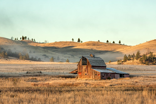 ranch wood old morning autumn sky cold building history fall abandoned home broken grass architecture barn neglect rural vintage season landscape countryside wooden montana frost day mt exterior view quebec antique decay farm empty horizon country rustic shed scenic nobody landmark farmland nostalgia heartland pasture forgotten american western lonely homestead shack aged copyspace agriculture deserted barnyard oldfashioned grassy fallingdown fallingapart farmstead colorimage