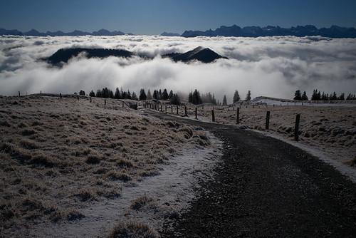 m2402606 rangefinder digitalrangefinder messsucher leica leicam mp typ240 28mm elmaritm elmaritm12828asph hiking wanderung randonnée escursione fog mist nebel rigi rigikulm vitznaurigikulmarthgoldau alps alpen landscape schweiz schwyz switzerland suisse svizzera svizra europe winter ©toniv 2016 161227