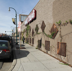 """Vine Panels"" public art idea for this Family Dollar façade."