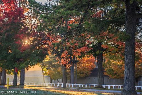 autumn ny newyork fall sunrise unitedstates upstate saratogasprings foliage nyra oklahomatrack canoneos6d canonef25105mmf4lisusm samanthadecker