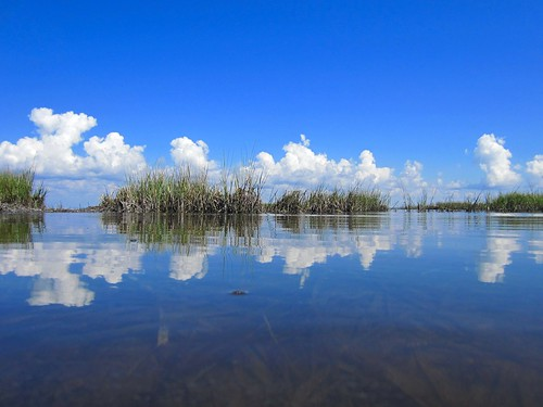 pool st port bay san florida joe cape tidal blas canon300hs20141010