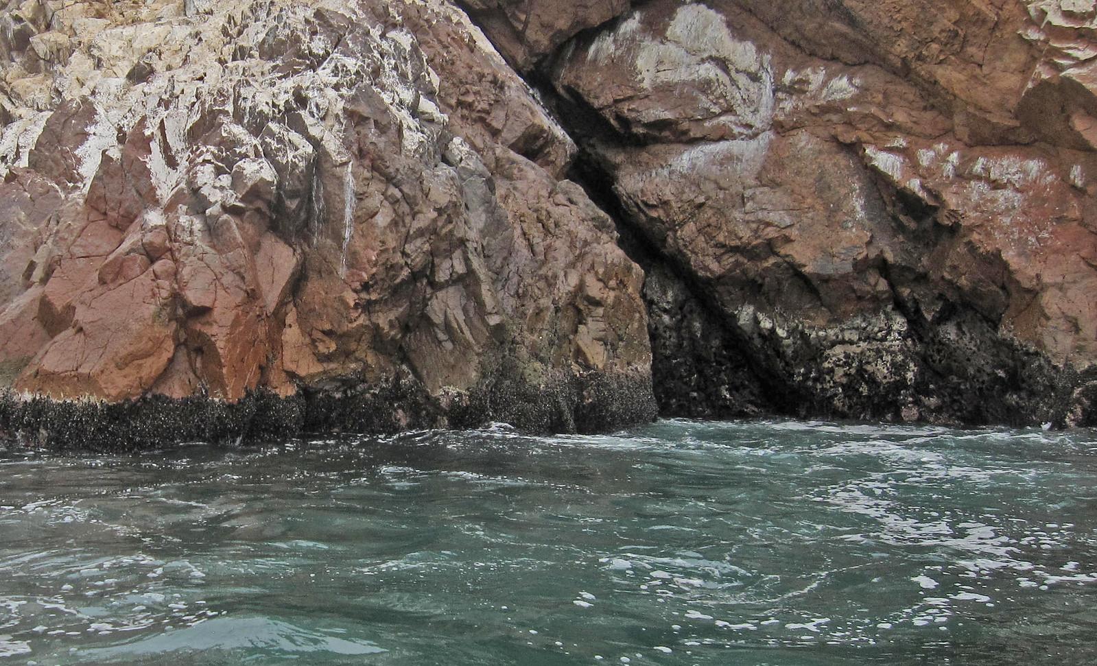 Islas Ballestas 50