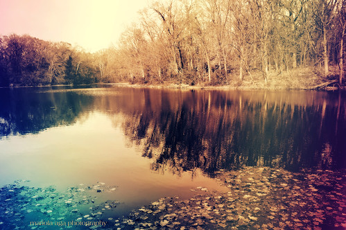 park autumn trees lake reflection fall water colors wideangle effect matthiessenstatepark thegalaxy matthiessenlake