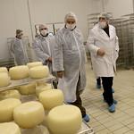 Visita a la planta de quesos de oveja Boladero