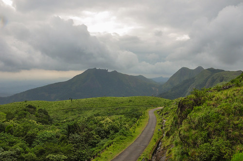 road india nature rain fog nikon kerala d90 idukki wagamon vagamon nikond90