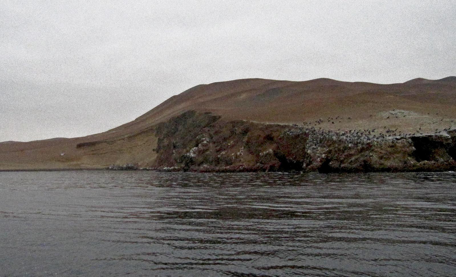 a Islas Ballestas 04