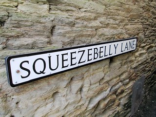 Kingsbridge Squeezebelly Lane South Hams | by Bridgemarker Tim