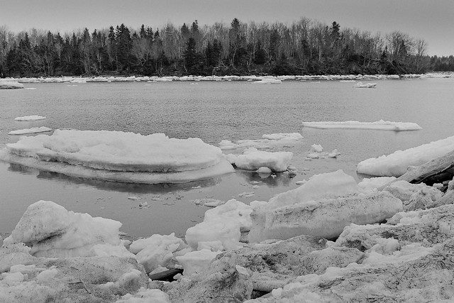 Ice Floes