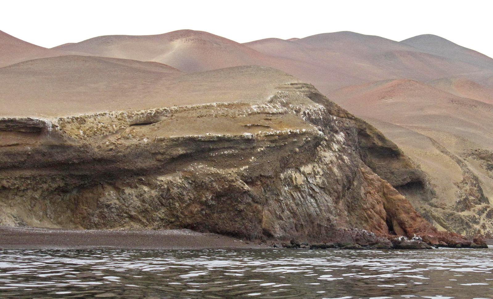 a Islas Ballestas 12